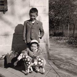 Joel et son petit cheval - Adeline Guillemaut