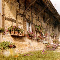 Photo ferme de la Minute - Adeline Guillemaut